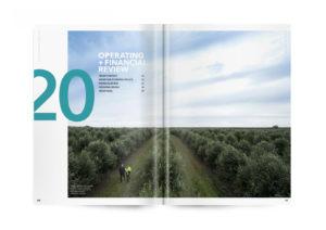Blackmores Annual Report